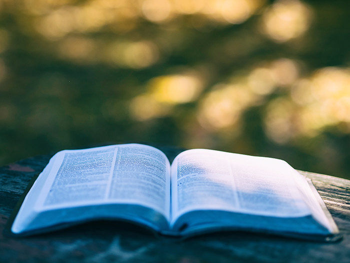 The Riches of God's Word